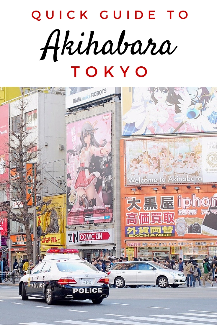 If you're in Tokyo, you have to visit Akihabara! It's a crazy neighbourhood full of anime, gaming, electronics and maid cafes.