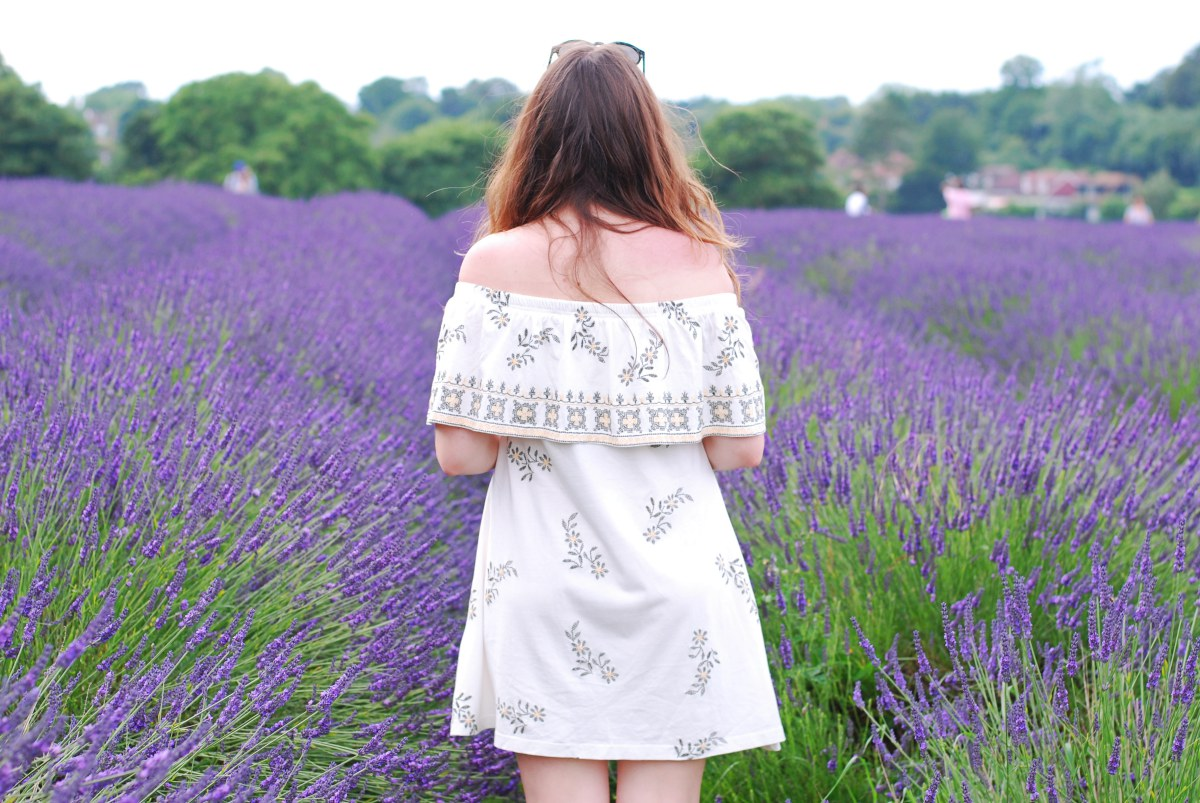 lavender london mayfield